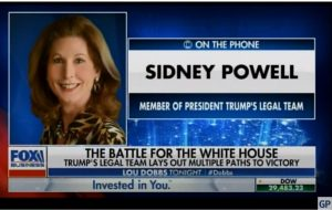 """BOOM! Attorney Sidney Powell Confirms """"Am Hearing That It Was Our Forces"""" Who Confiscated the Scytl Servers in Germany (Audio)"""